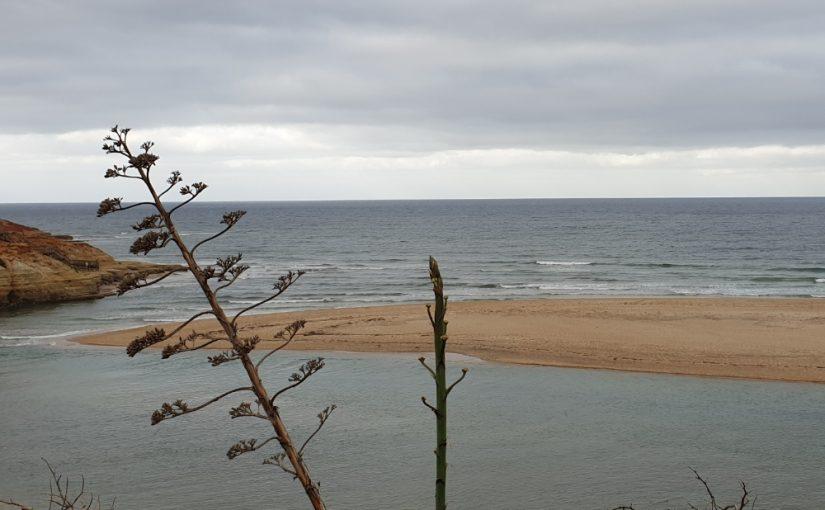 Mid Coast